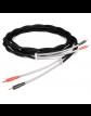 Chord Signature Reference kabel głośnikowy carny